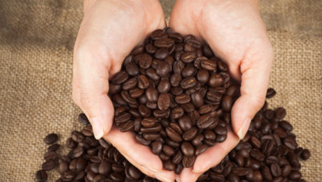 coffee-beans-and-womans-hands_rfrtix